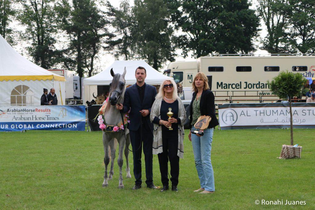 Marrakech J champion filly
