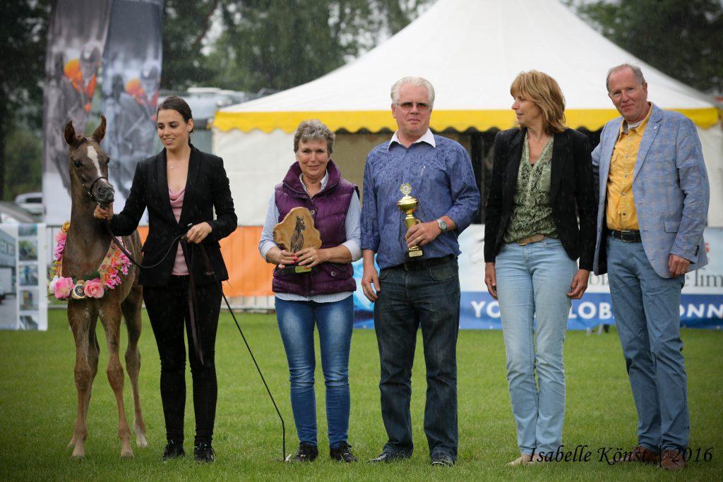 Cadanz Faridah champion arabian filly foal