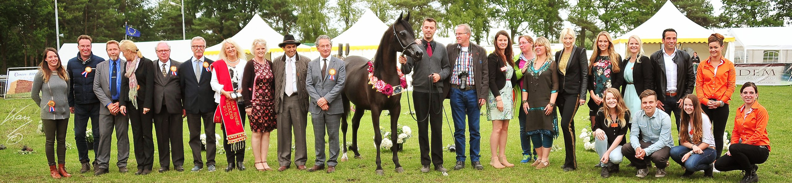 Best of show filly standing surrounded by the Jadem Arabians team