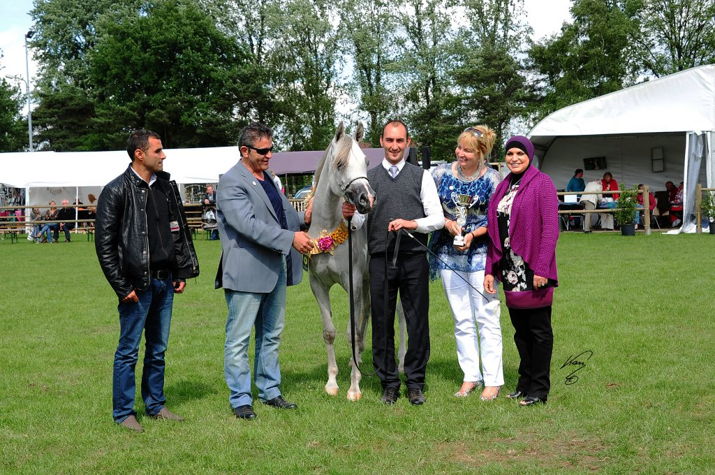 Bess me Simone champion arabian mare