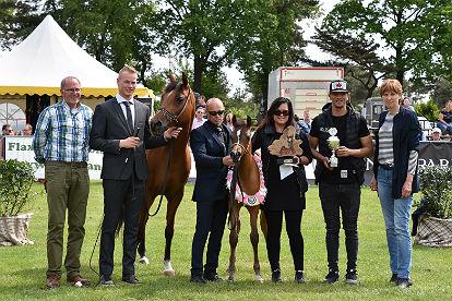 KA Wahidah champion arabian foal with her dam