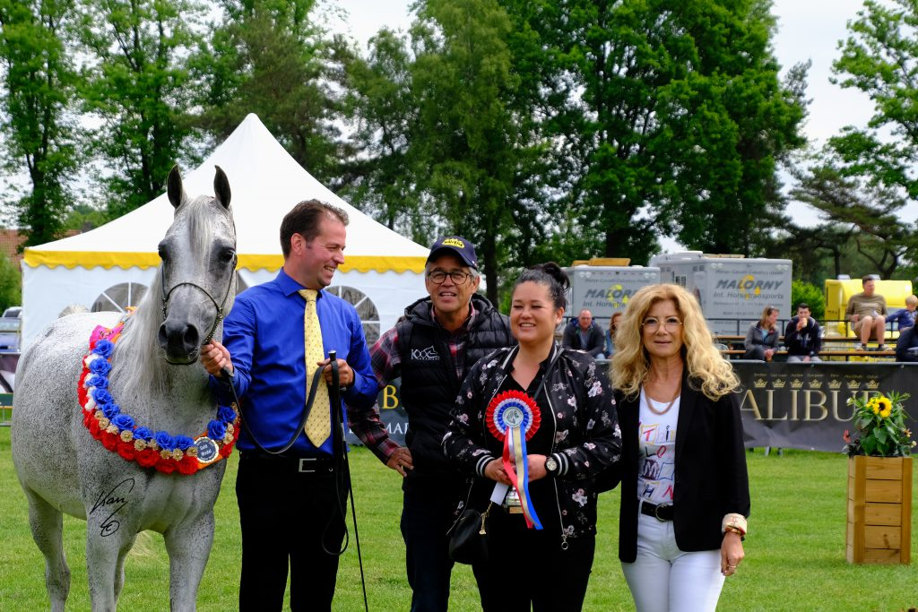 Ema, classical Old World Polish mare